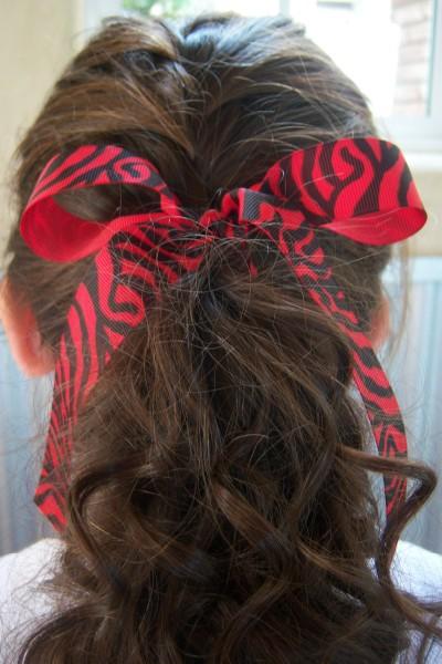 Red Zebra Ribbon