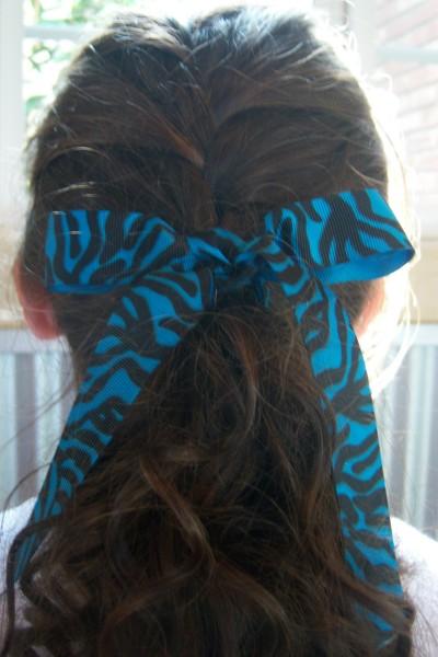 Teal Zebra Ribbon